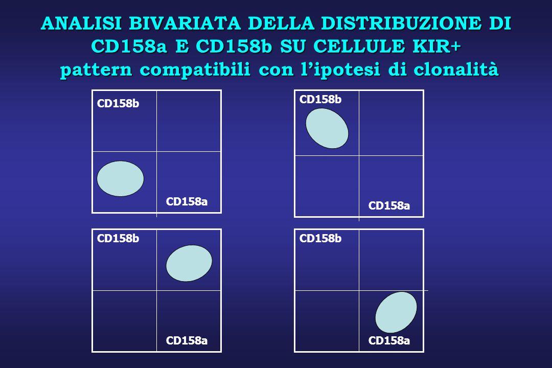 ANALISI BIVARIATA DELLA DISTRIBUZIONE DI CD158a E CD158b SU CELLULE KIR+ pattern compatibili con l'ipotesi di clonalità