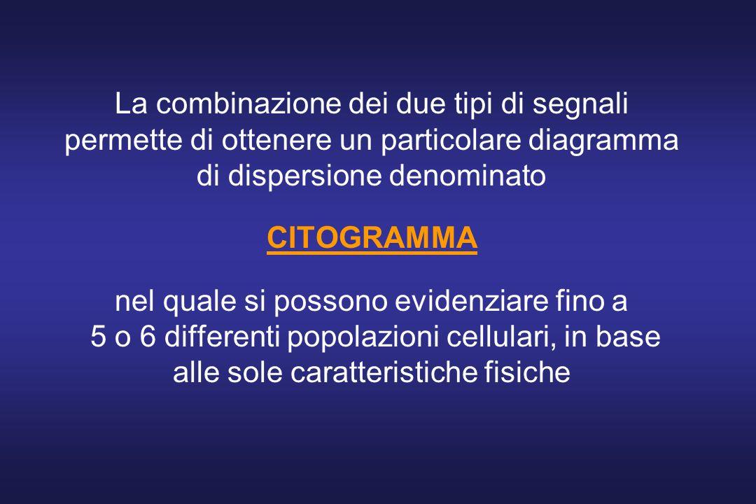 La combinazione dei due tipi di segnali permette di ottenere un particolare diagramma di dispersione denominato CITOGRAMMA nel quale si possono evidenziare fino a 5 o 6 differenti popolazioni cellulari, in base alle sole caratteristiche fisiche