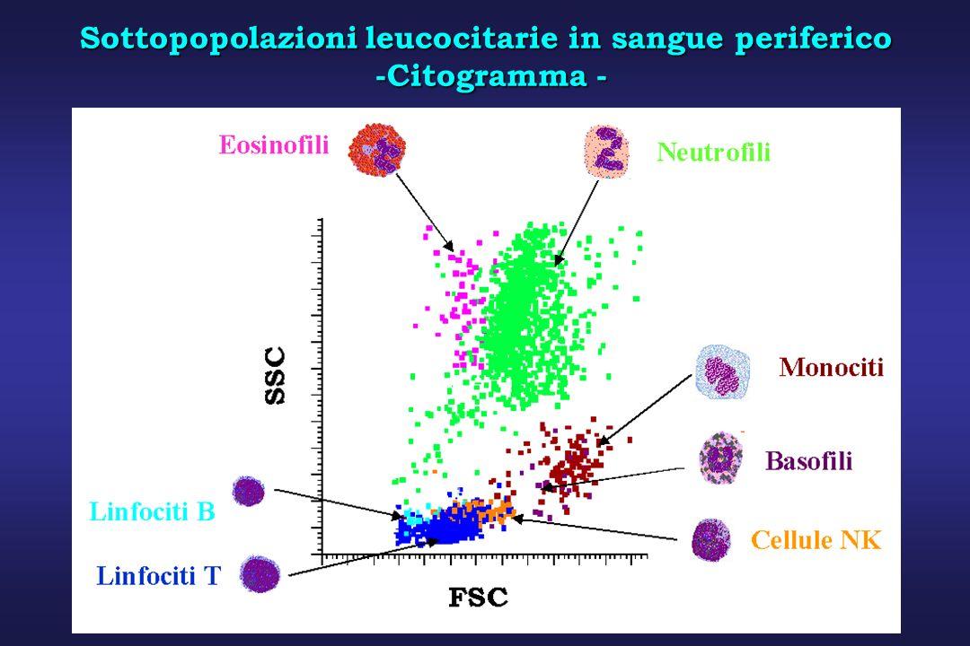 Sottopopolazioni leucocitarie in sangue periferico