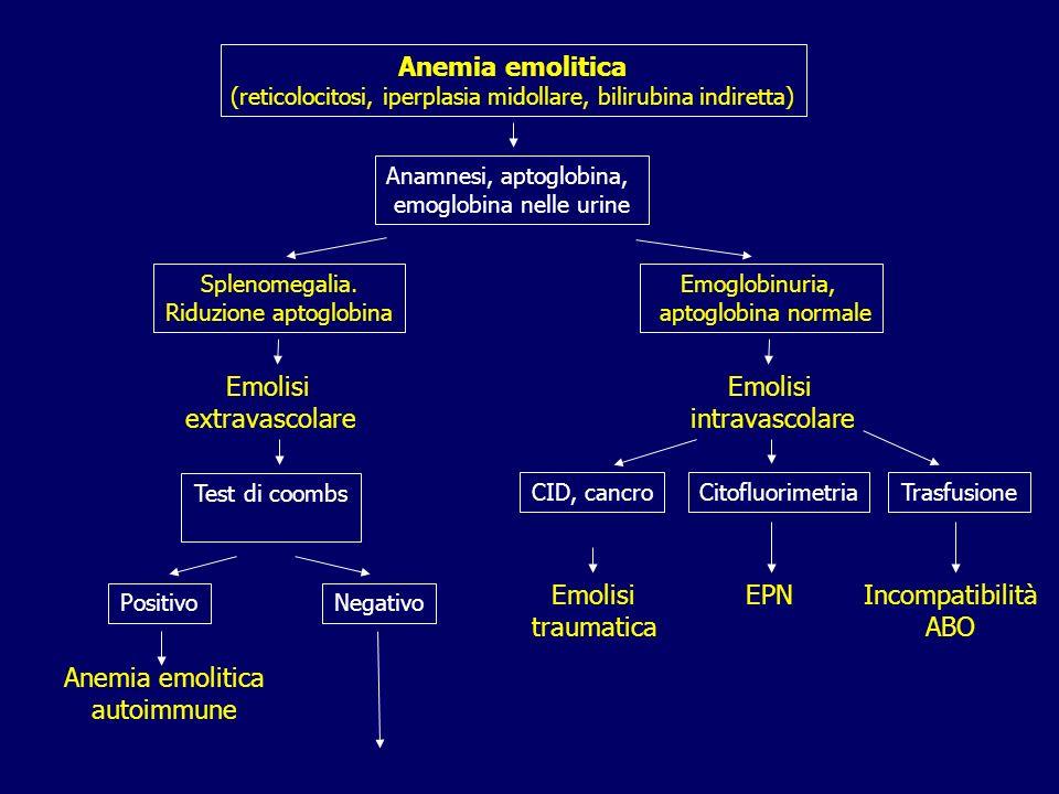 Anemia emolitica Emolisi extravascolare Emolisi intravascolare Emolisi