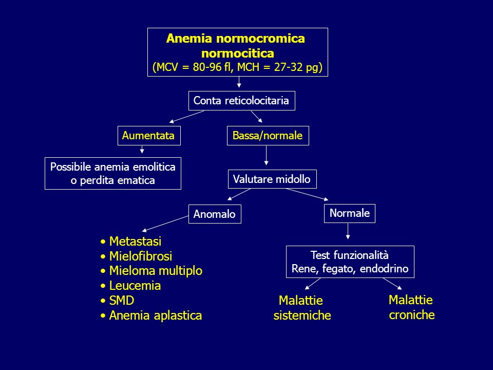 Anemia normocromica normocitica