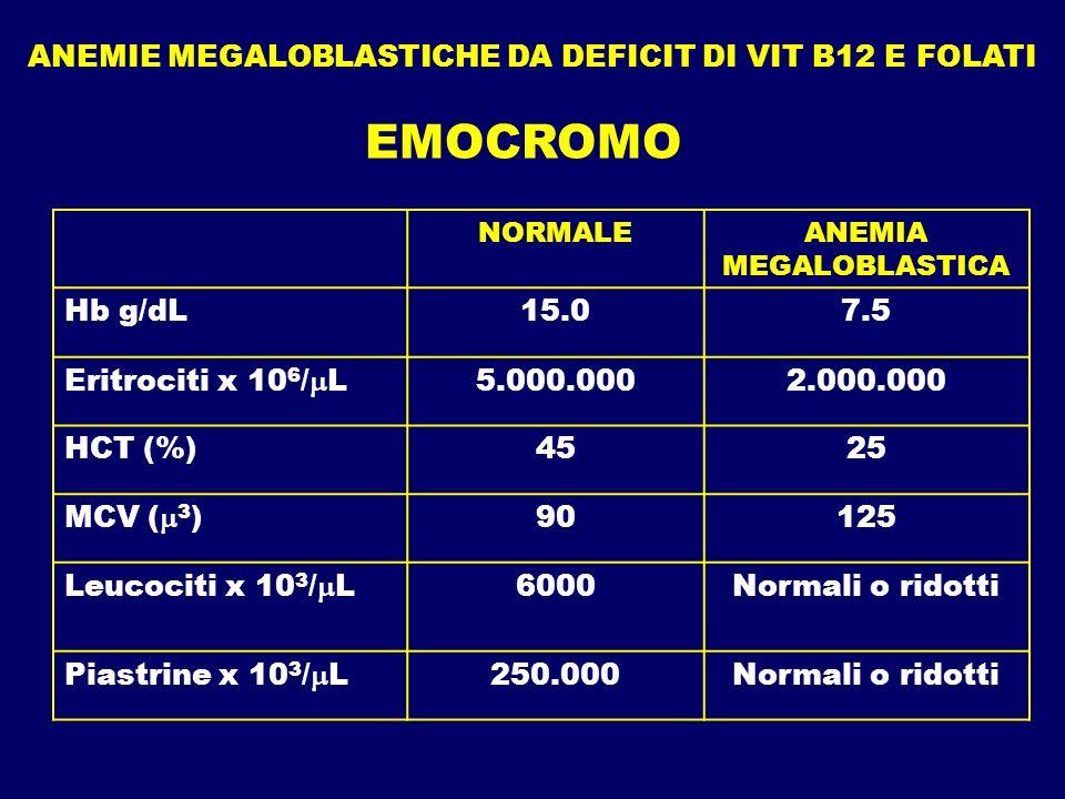 EMOCROMO ANEMIE MEGALOBLASTICHE DA DEFICIT DI VIT B12 E FOLATI Hb g/dL