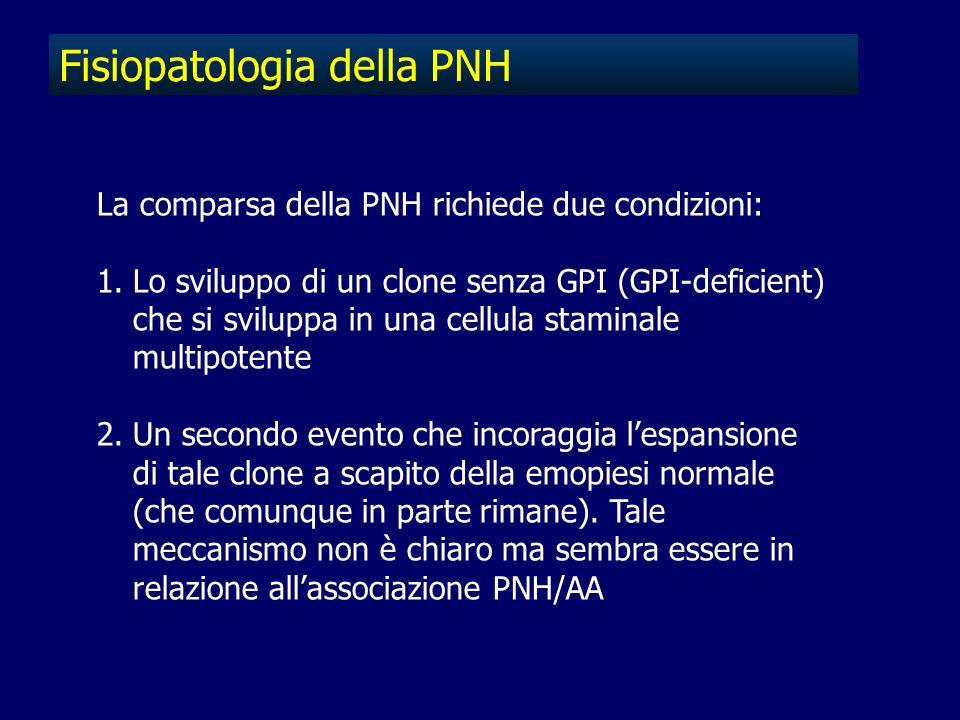 Fisiopatologia della PNH