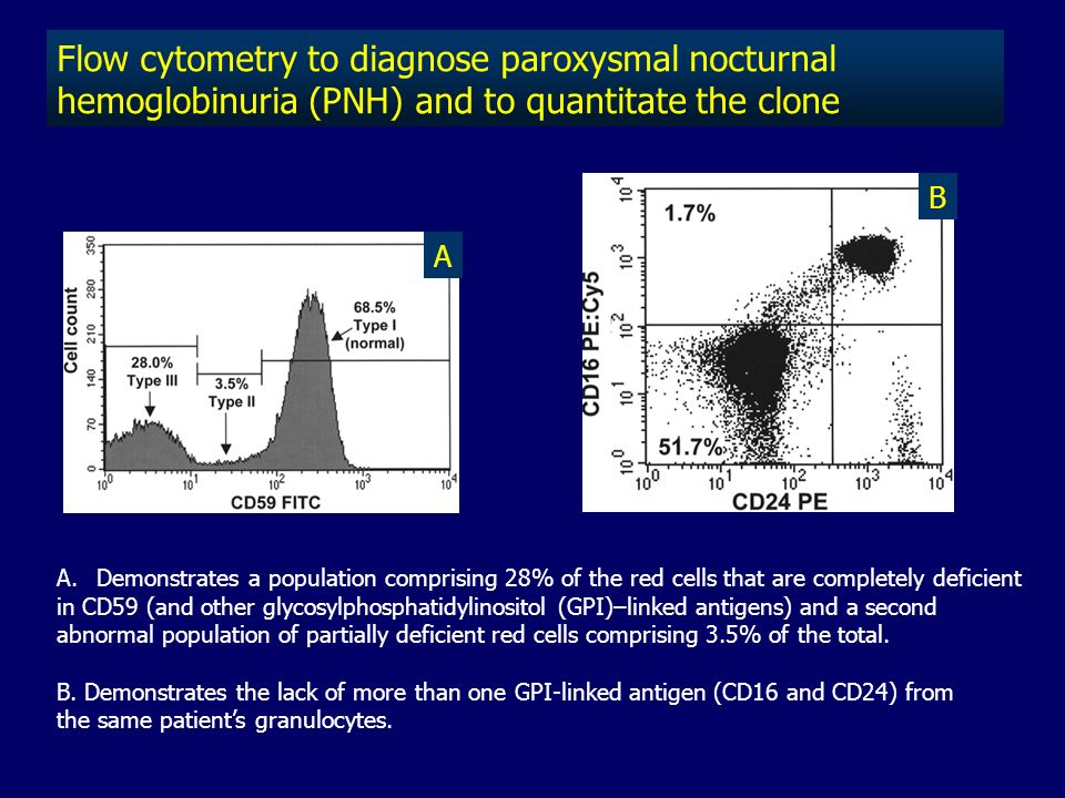 Flow cytometry to diagnose paroxysmal nocturnal