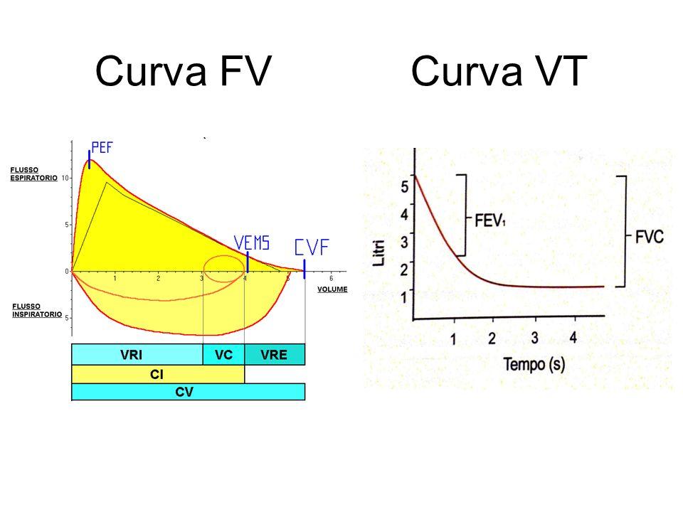 Curva FV Curva VT