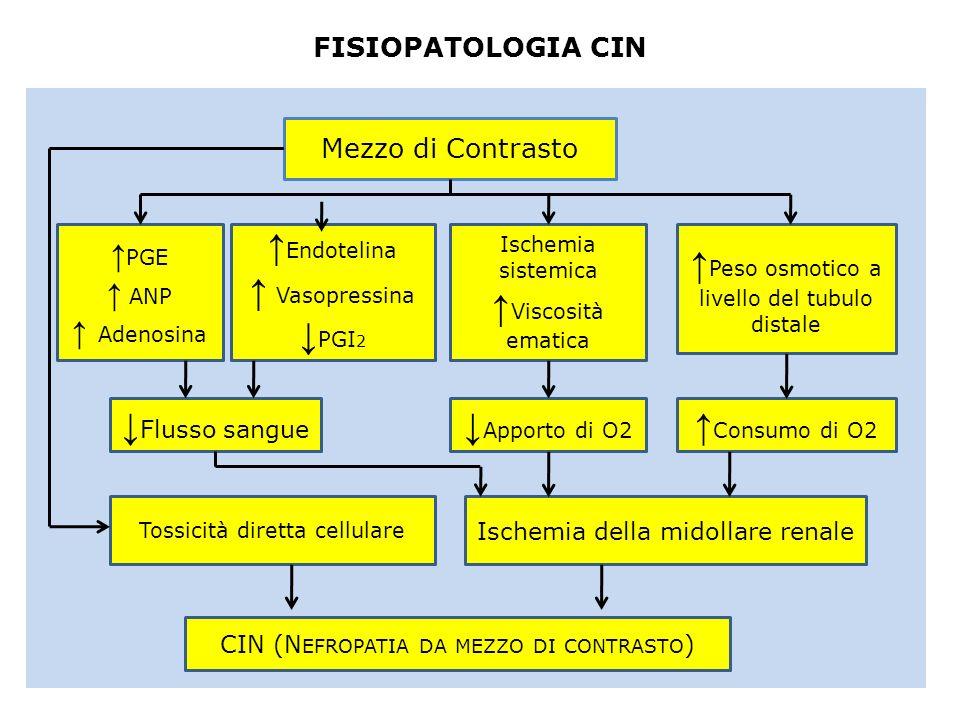 ↑Peso osmotico a livello del tubulo distale