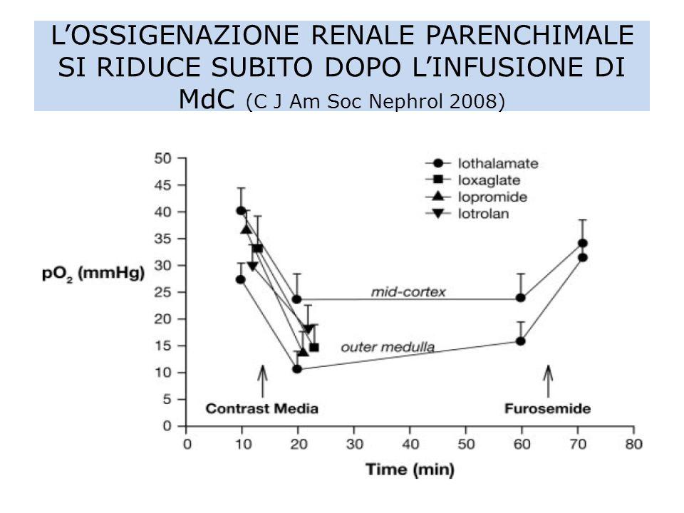 L'OSSIGENAZIONE RENALE PARENCHIMALE SI RIDUCE SUBITO DOPO L'INFUSIONE DI MdC (C J Am Soc Nephrol 2008)