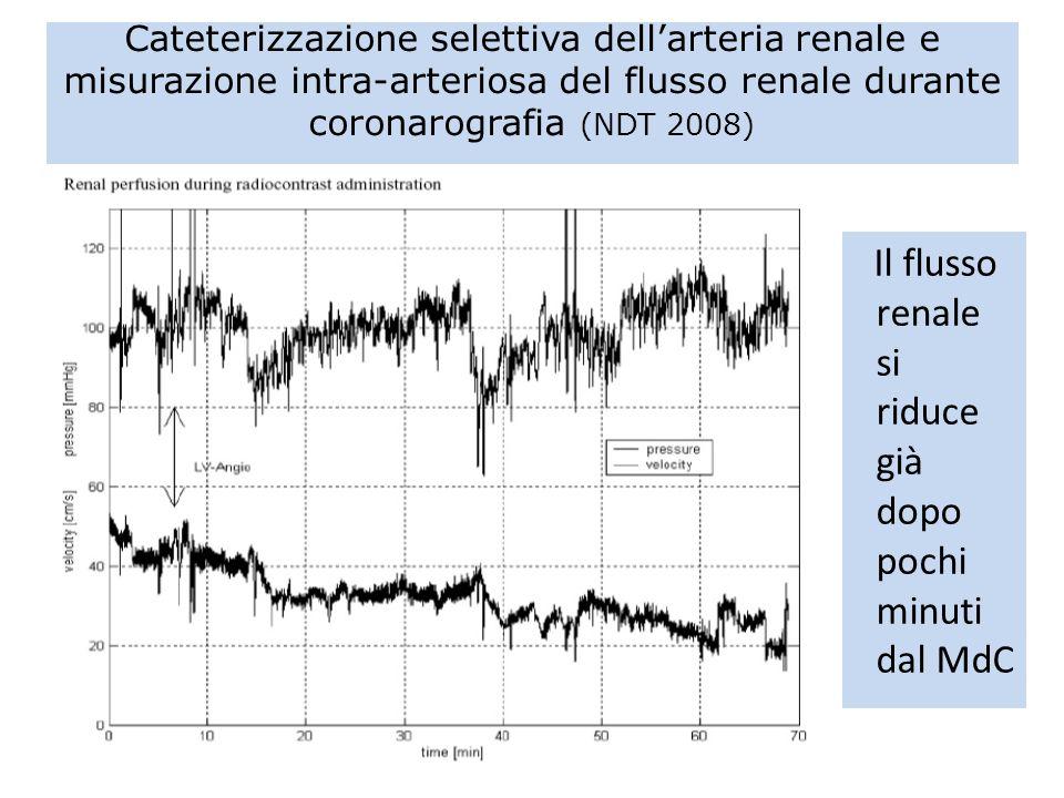 Cateterizzazione selettiva dell'arteria renale e misurazione intra-arteriosa del flusso renale durante coronarografia (NDT 2008)