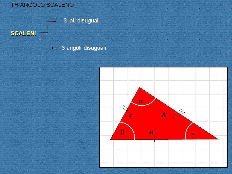 a c b b a g TRIANGOLO SCALENO 3 lati disuguali SCALENI