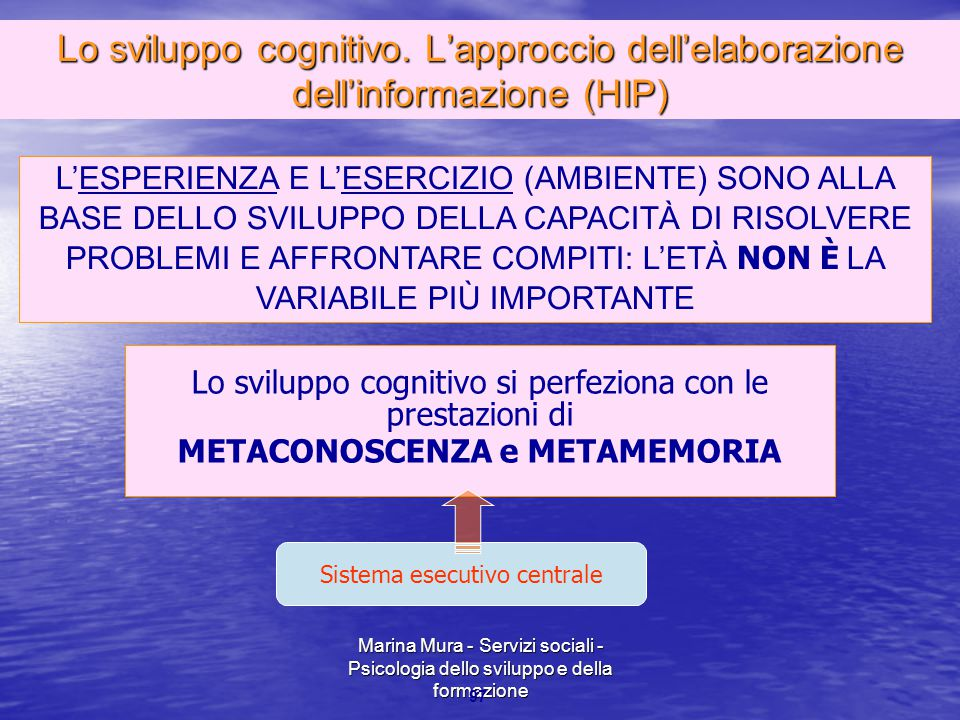METACONOSCENZA e METAMEMORIA