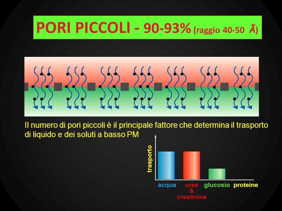PORI PICCOLI - 90-93% (raggio 40-50 Å)