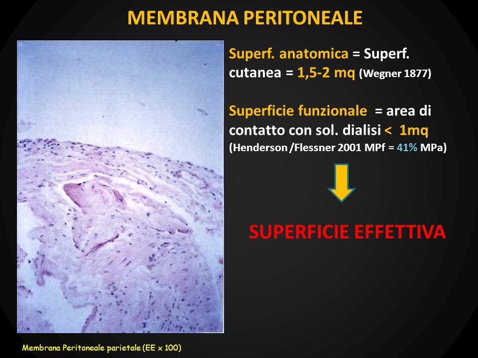 MEMBRANA PERITONEALE SUPERFICIE EFFETTIVA