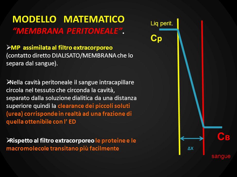 MODELLO MATEMATICO MEMBRANA PERITONEALE .