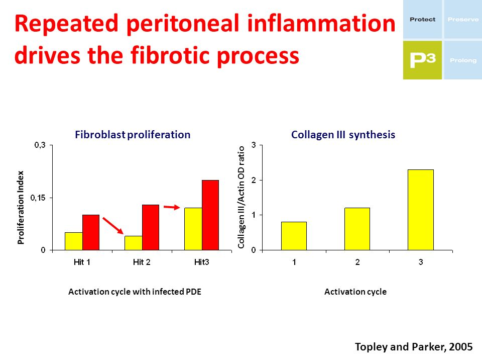 Repeated peritoneal inflammation drives the fibrotic process