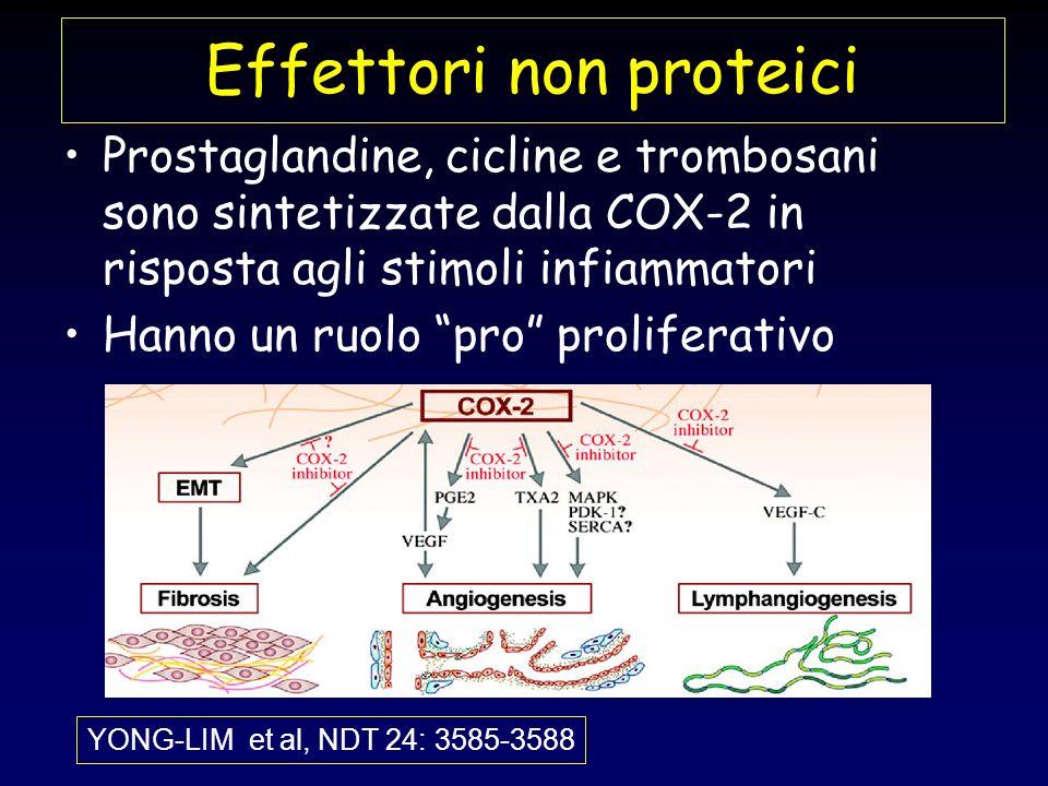 Effettori non proteici