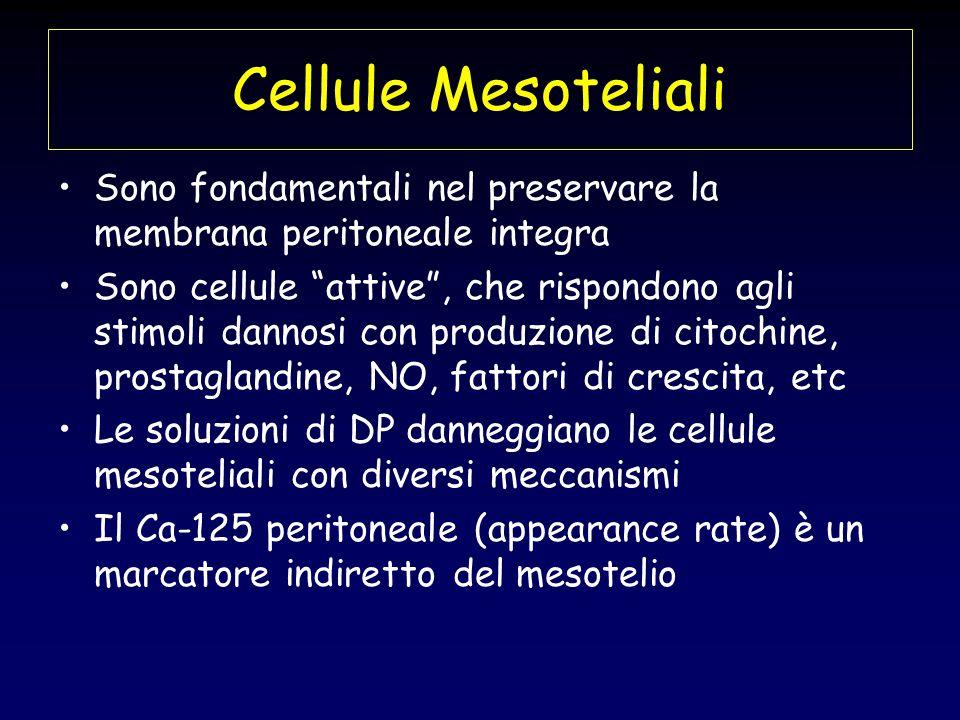 Cellule Mesoteliali Sono fondamentali nel preservare la membrana peritoneale integra.
