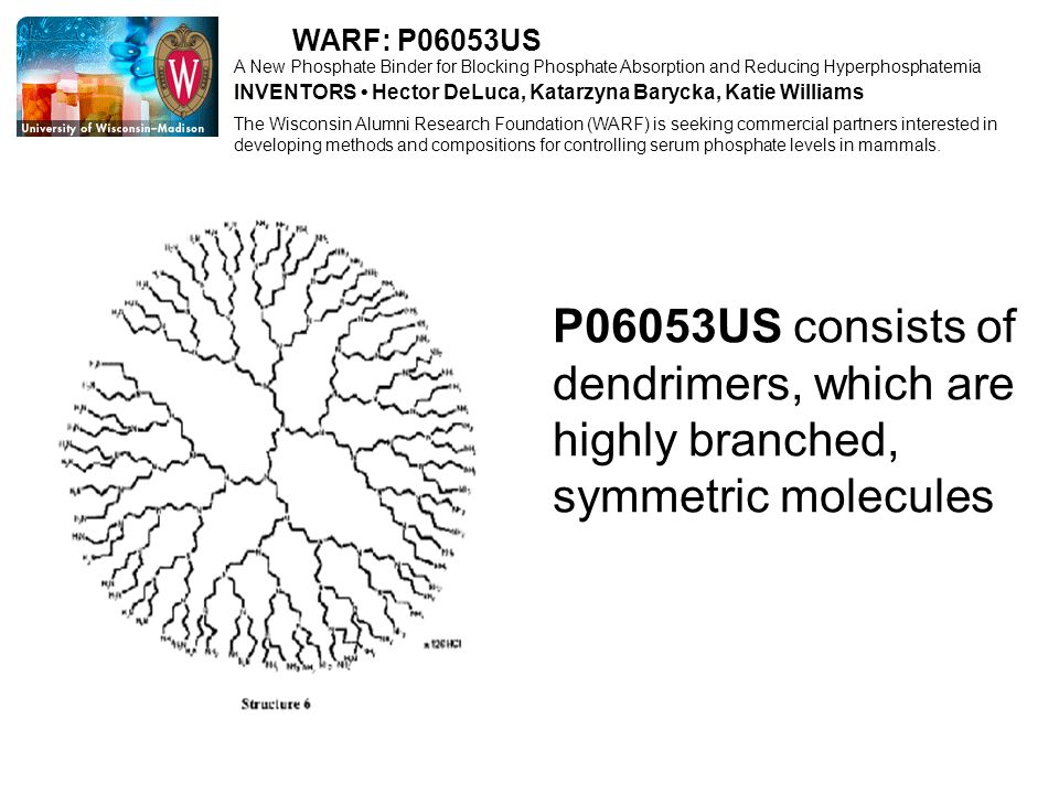 WARF: P06053US A New Phosphate Binder for Blocking Phosphate Absorption and Reducing Hyperphosphatemia.