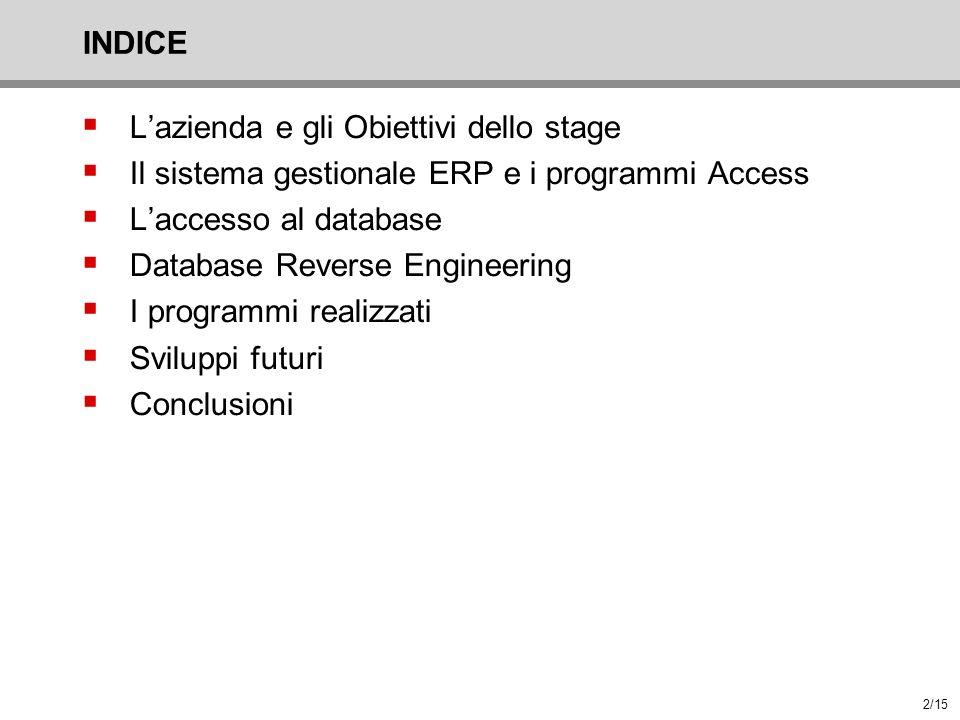 INDICE L'azienda e gli Obiettivi dello stage. Il sistema gestionale ERP e i programmi Access. L'accesso al database.