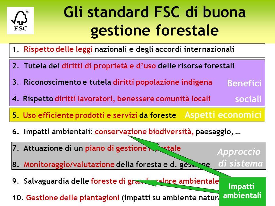 Gli standard FSC di buona gestione forestale
