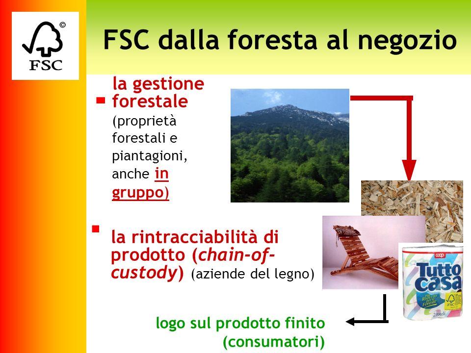FSC dalla foresta al negozio