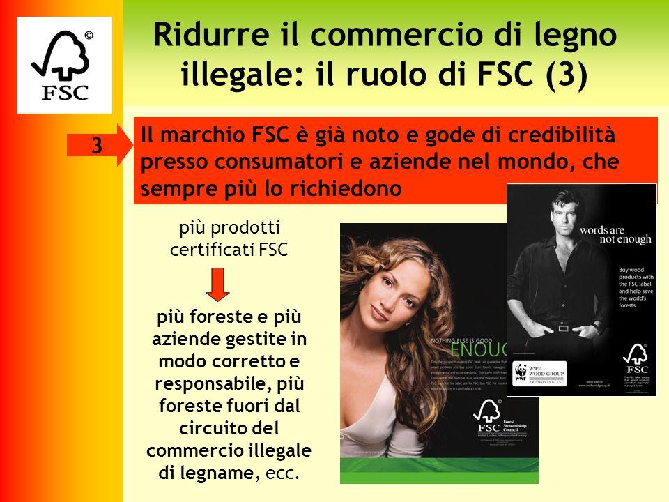 Ridurre il commercio di legno illegale: il ruolo di FSC (3)