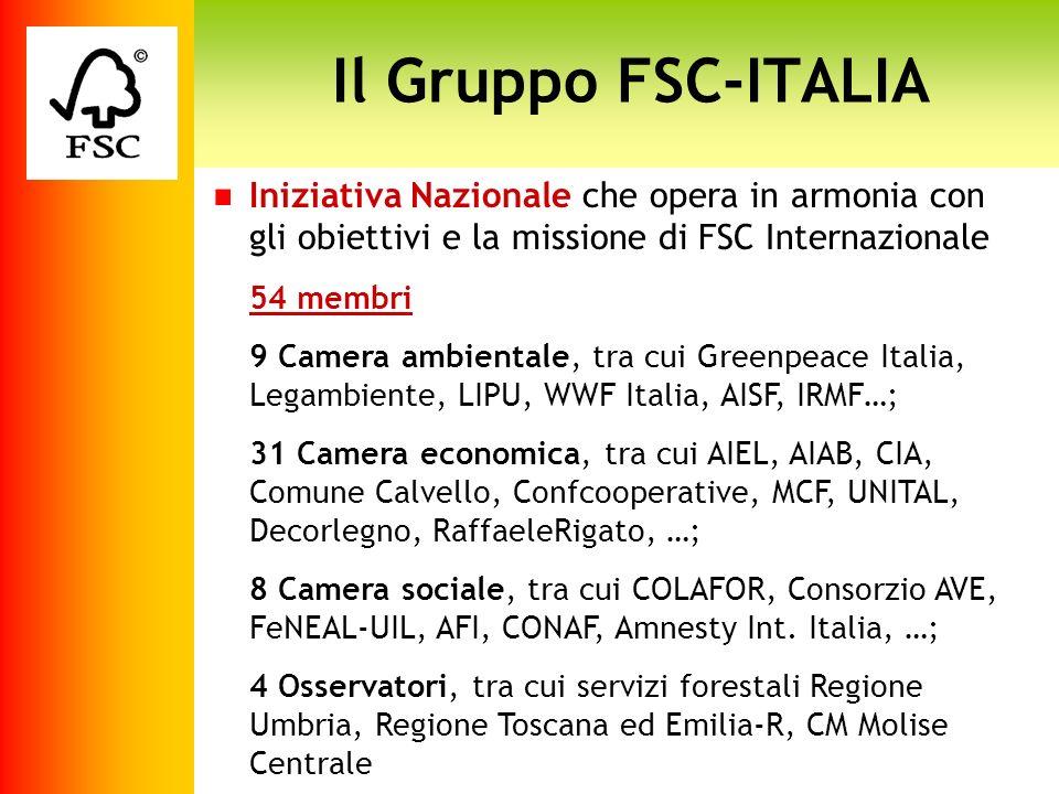 Il Gruppo FSC-ITALIAIniziativa Nazionale che opera in armonia con gli obiettivi e la missione di FSC Internazionale.