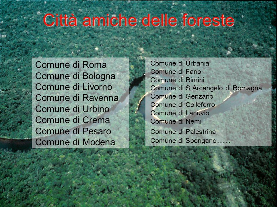 Città amiche delle foreste