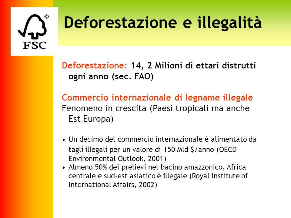 Deforestazione e illegalità