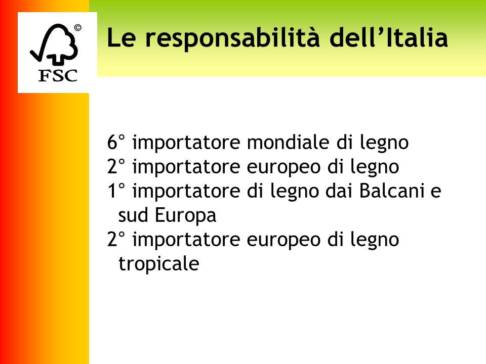 Le responsabilità dell'Italia