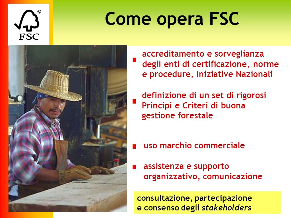 Come opera FSC accreditamento e sorveglianza degli enti di certificazione, norme e procedure, Iniziative Nazionali.