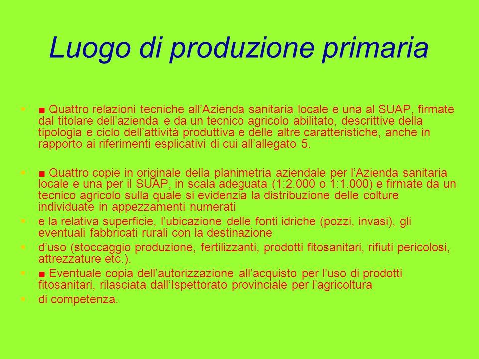 Luogo di produzione primaria