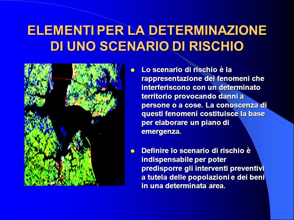 ELEMENTI PER LA DETERMINAZIONE DI UNO SCENARIO DI RISCHIO