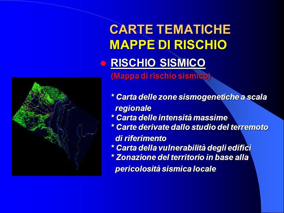 CARTE TEMATICHE MAPPE DI RISCHIO
