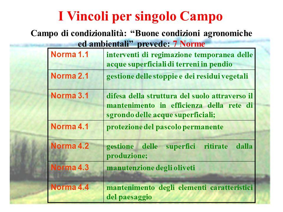 I Vincoli per singolo Campo