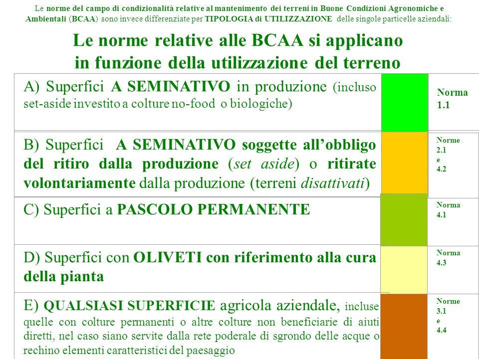 Le norme del campo di condizionalità relative al mantenimento dei terreni in Buone Condizioni Agronomiche e