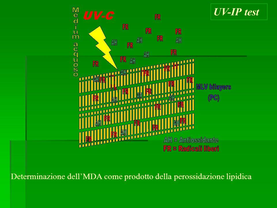 UV-IP test Determinazione dell'MDA come prodotto della perossidazione lipidica