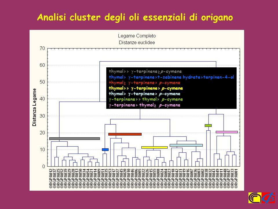 Analisi cluster degli oli essenziali di origano