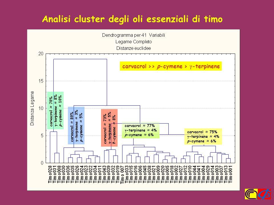 Analisi cluster degli oli essenziali di timo