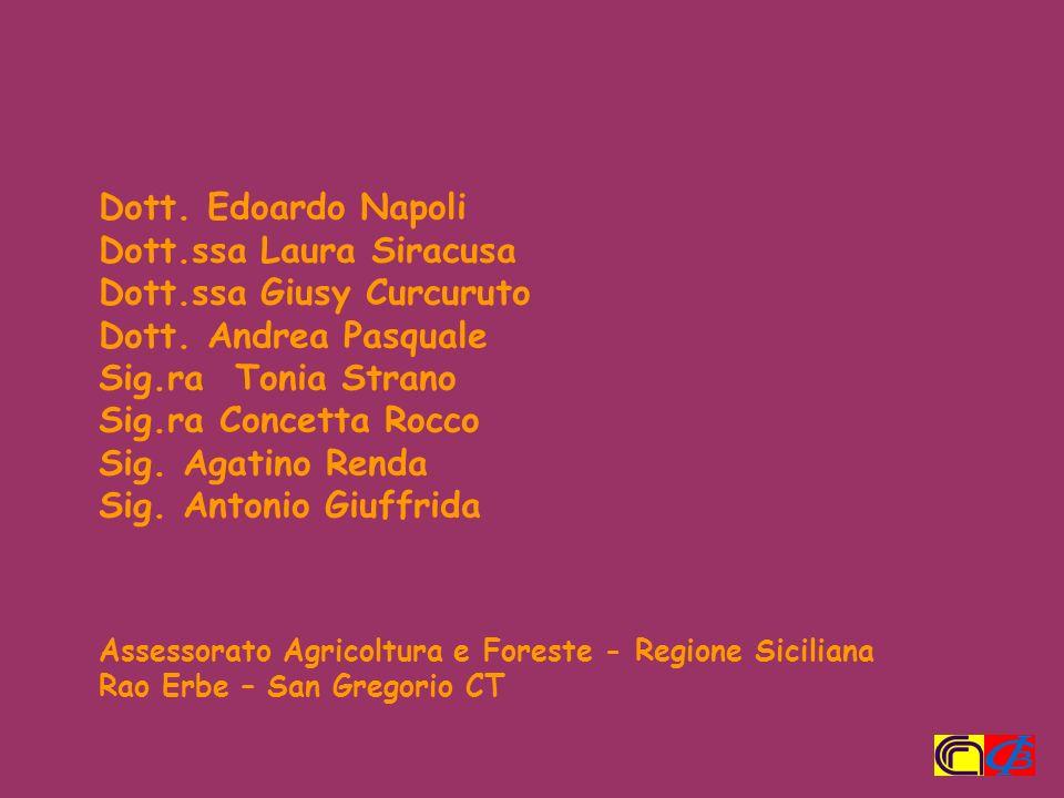 Dott.ssa Laura Siracusa Dott.ssa Giusy Curcuruto Dott. Andrea Pasquale