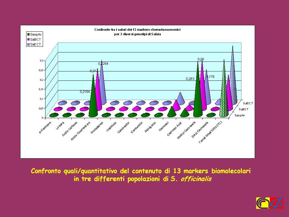 Confronto quali/quantitativo del contenuto di 13 markers biomolecolari