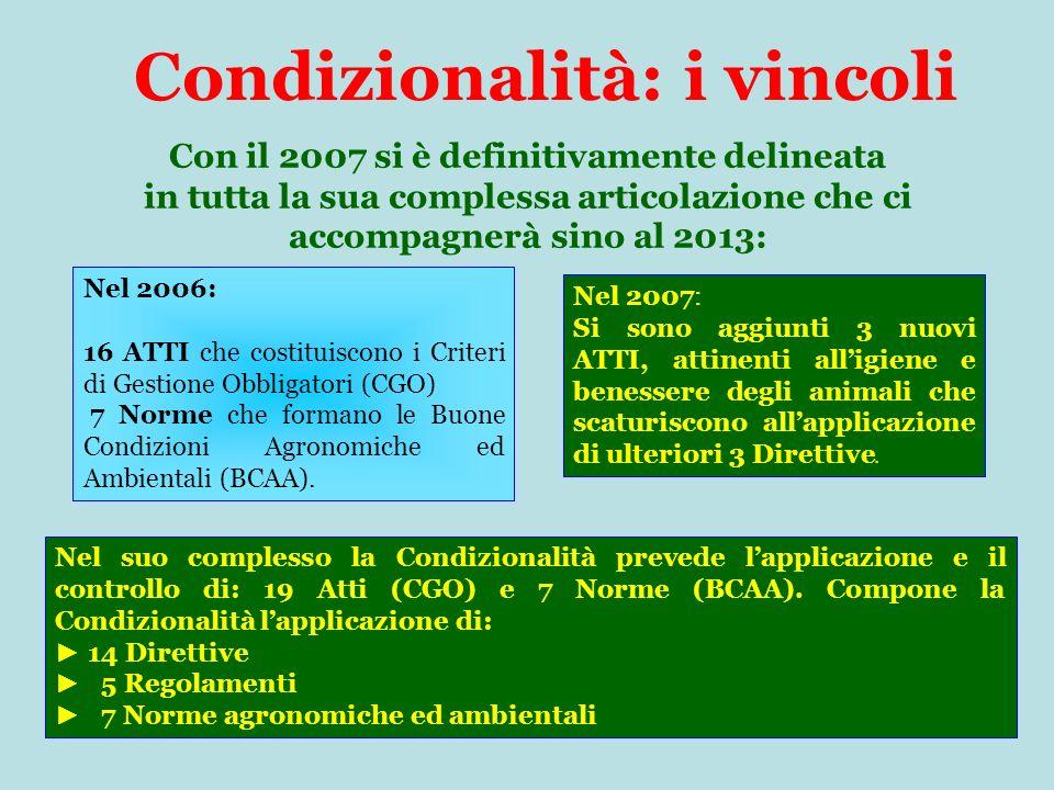 Condizionalità: i vincoli Con il 2007 si è definitivamente delineata