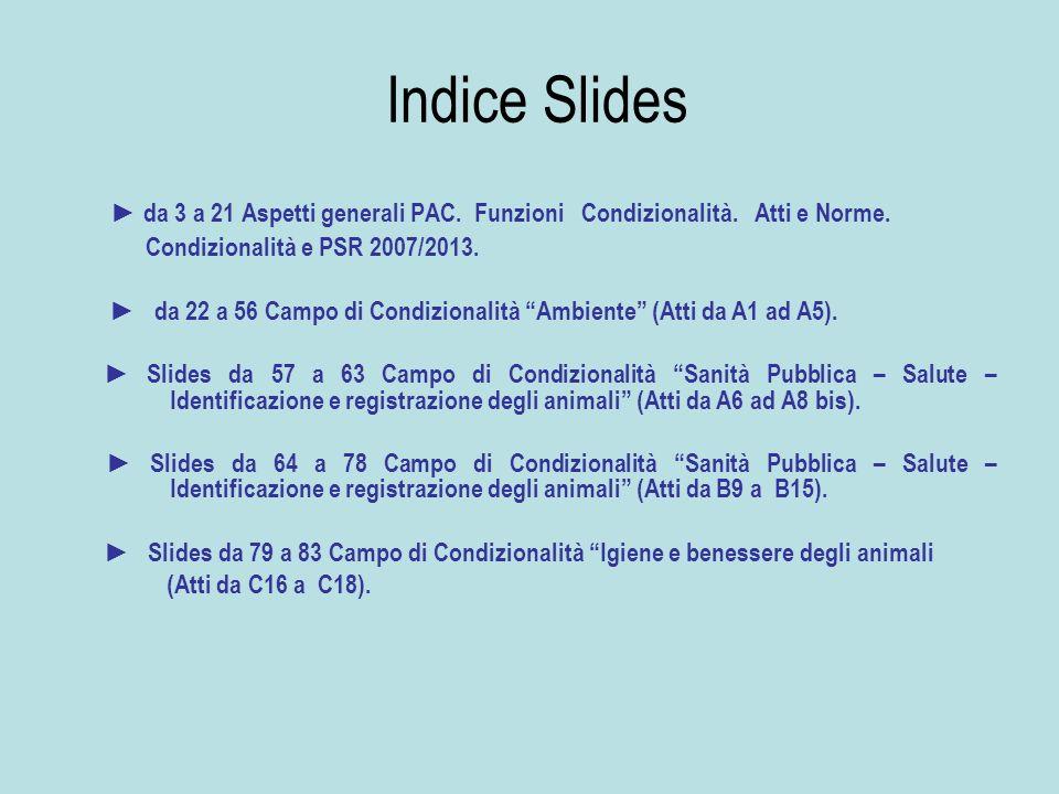 Indice Slides ► da 3 a 21 Aspetti generali PAC. Funzioni Condizionalità. Atti e Norme. Condizionalità e PSR 2007/2013.