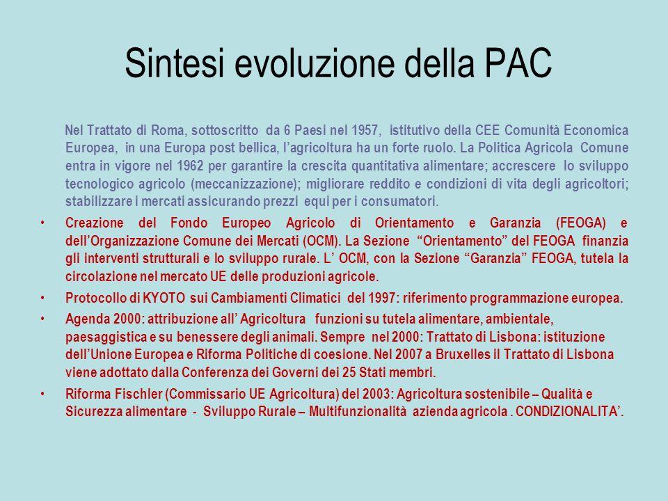 Sintesi evoluzione della PAC