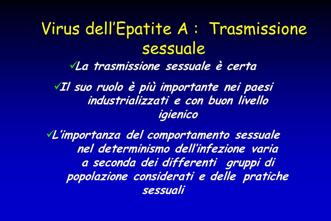 Virus dell'Epatite A : Trasmissione sessuale