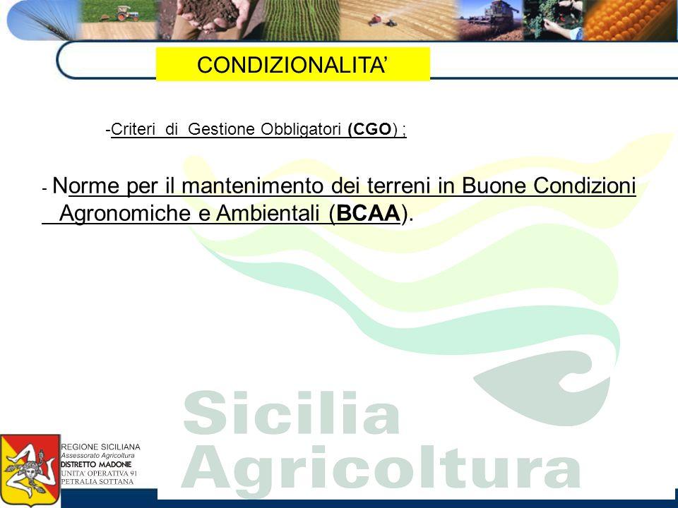 Agronomiche e Ambientali (BCAA).