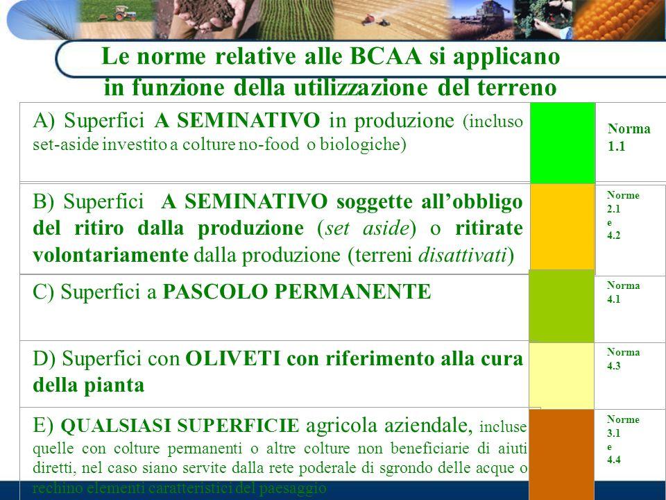 Le norme relative alle BCAA si applicano in funzione della utilizzazione del terreno
