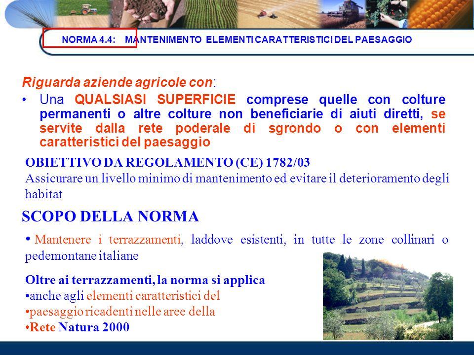 NORMA 4.4: MANTENIMENTO ELEMENTI CARATTERISTICI DEL PAESAGGIO