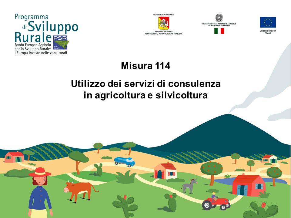 Utilizzo dei servizi di consulenza in agricoltura e silvicoltura