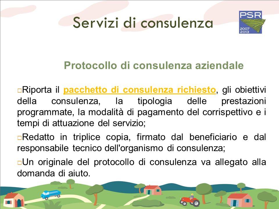 Protocollo di consulenza aziendale