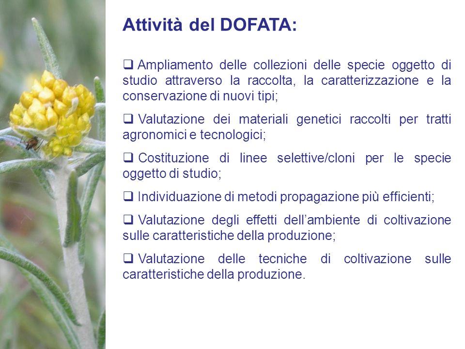 Attività del DOFATA: